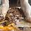 Thumbnail: Giant Jock's Revenge: Tricks & Treats