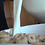Thumbnail: Emilio Drops Tiny Son in Cereal