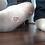Thumbnail: Brett Foot Tortures Tiny Roommate