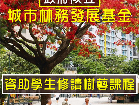政府「城市林務發展基金」資助學生修讀樹藝課程