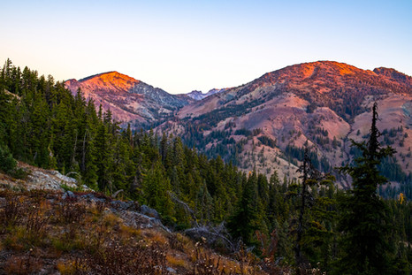 Teanaway Miller Peak Trail, Photograph by Mary Maletzke