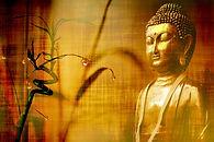 bamboo-2118461_1920.jpg