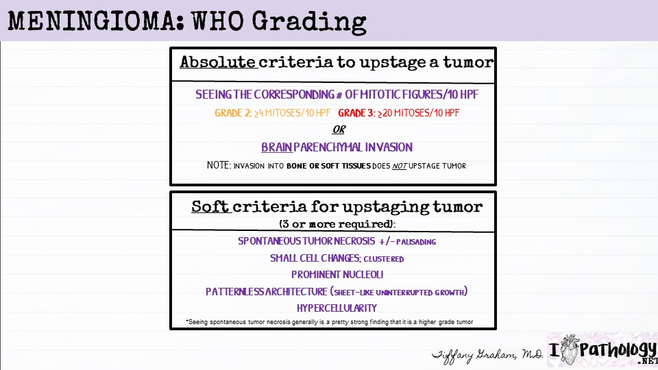 Upstaging from grade 1 to grade 2