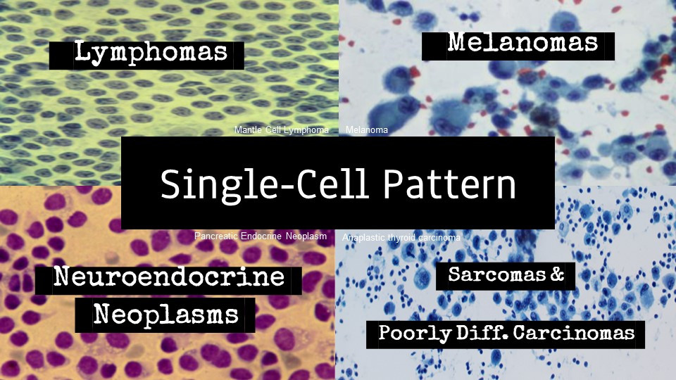 DDx: Single cells
