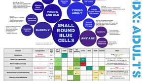 Super Duper High Yield Review of Small Round Blue Cell Tumors in Adults