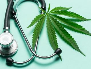Autoridades sanitarias deberán armonizar las disposiciones en el uso terapéutico de la cannabis y su