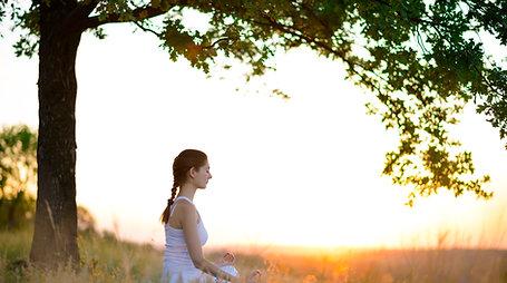 Wellness Day Retreat Pass