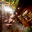 Thumbnail: Exotic Rainforest Treehouse