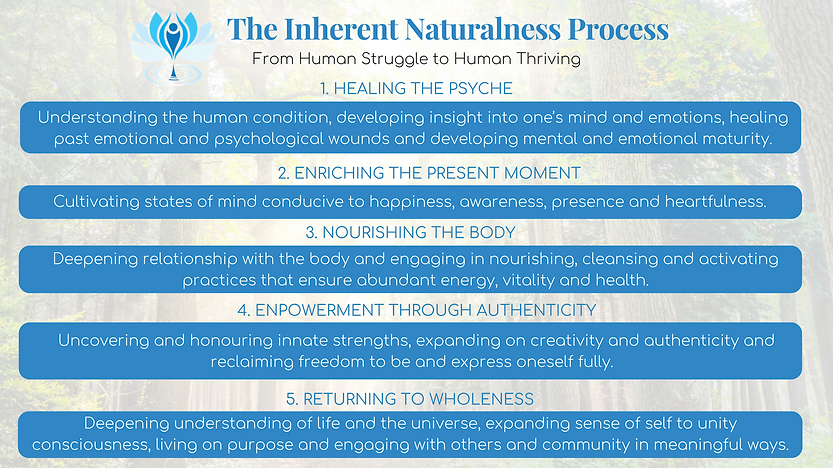 INHERENT NATURALNESS PROCESS 5 DOMAINS S