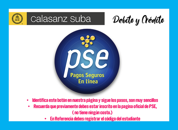 PSE pagos.png