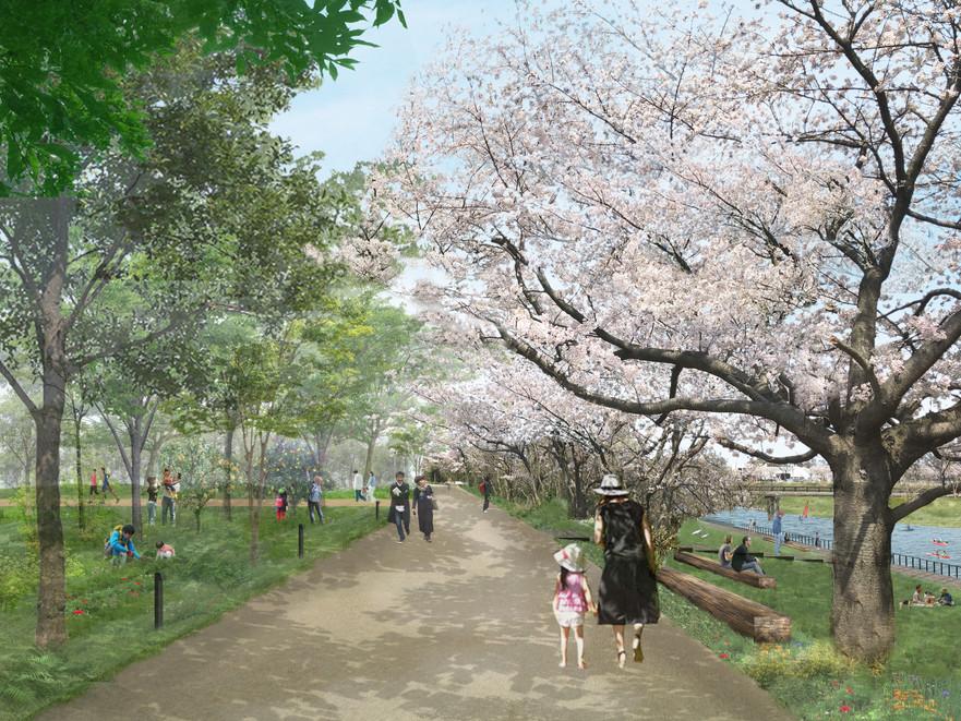 170428_桜トンネル.jpg