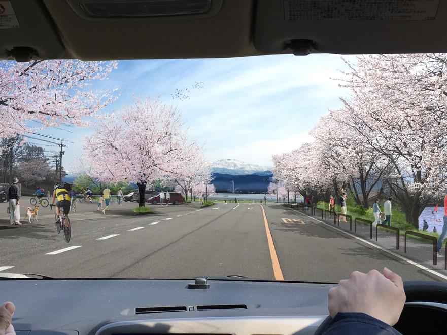 170502_39号線_桜_105.jpg