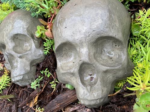 "Cement Garden Skull, 8"""