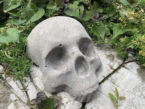 "Moss Growing Cement Skull, 8"""