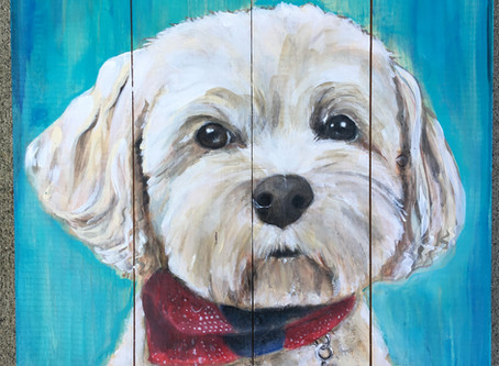 Custom Pet Portrait Paintings in Snohomish - Seattle