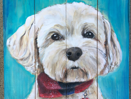 Custom Pet Portrait Paintings in Snohomish - Seattle