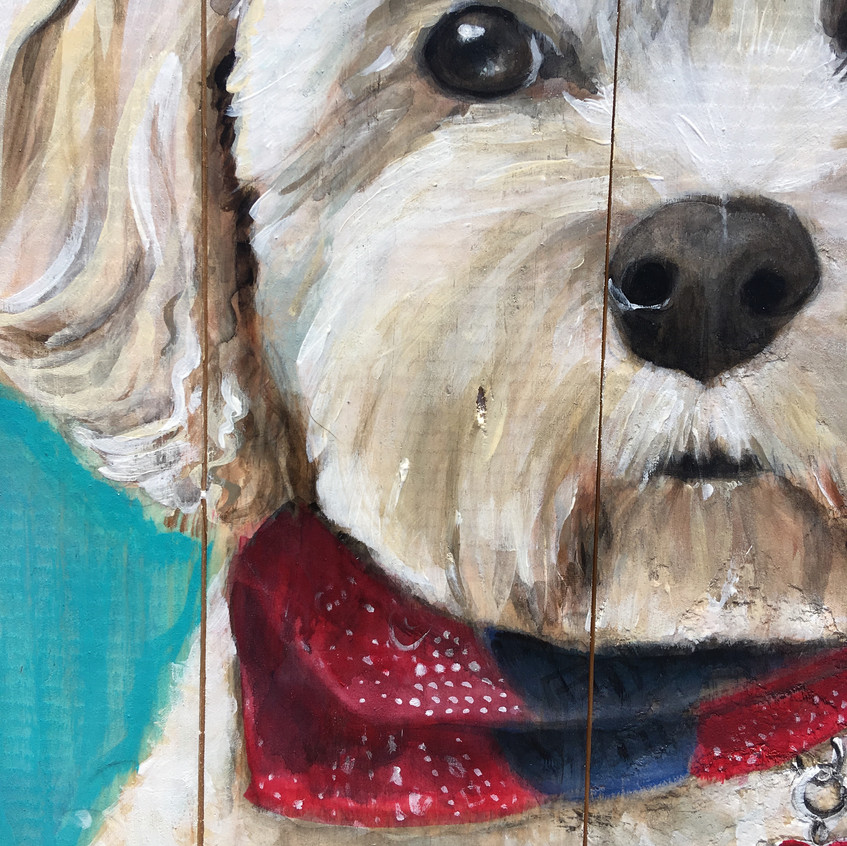 Custom pet paintings by Carrie Milburn, Snohomish, WA.
