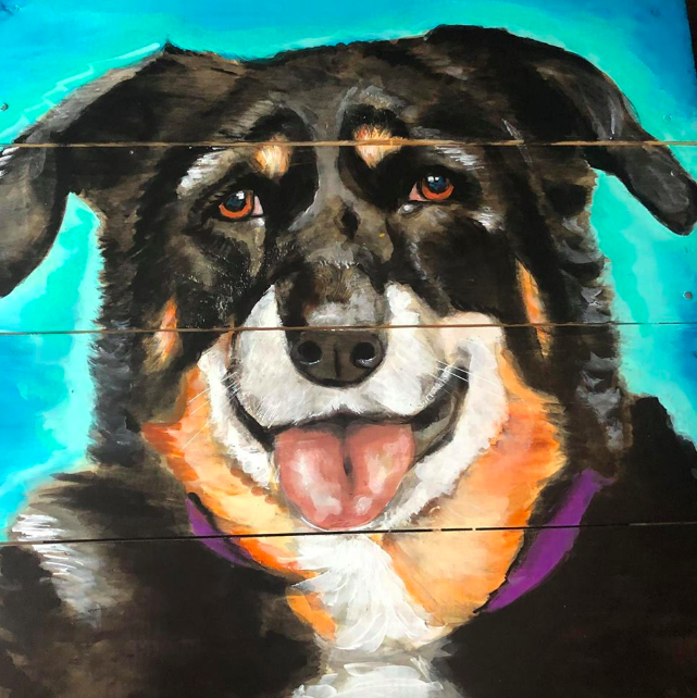 dog-portrait-1