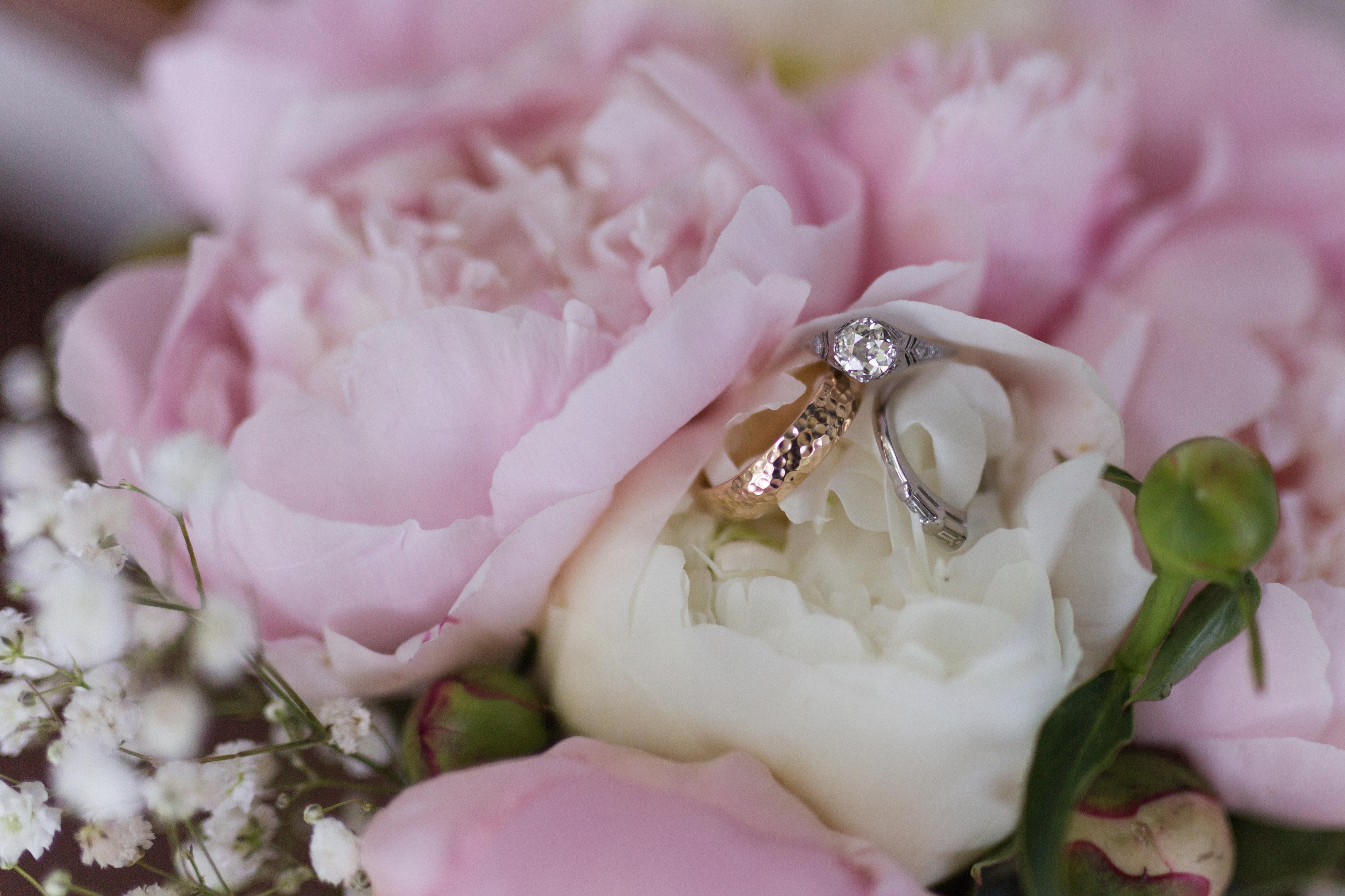 Wedding Flowers U0026 Planning In Waynesboro, VA | The Faded Poppy | Weddings  Lindsay Middlemas High Res (156)