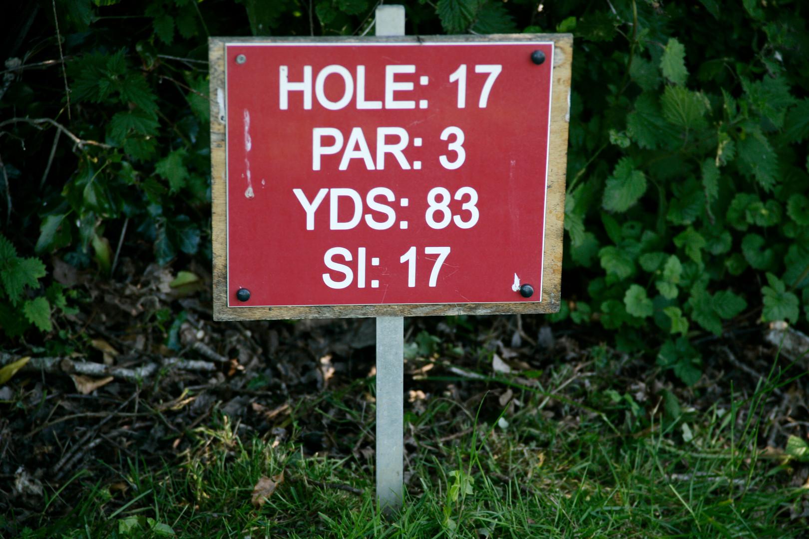 040 - Hole 17.JPG