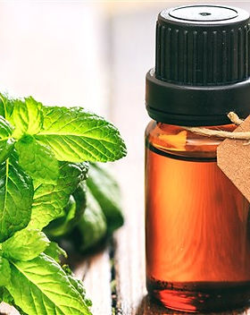 peppermint-oil-today-main-181220-01_7237