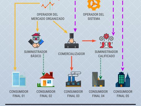QUIÉN ES QUIÉN EN EL MERCADO ELÉCTRICO DE MÉXICO