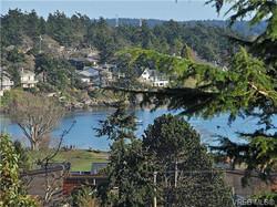 Cadboro Bay Views