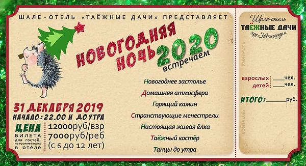 билет на НГ 2020.png