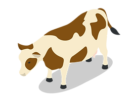 iconfinder_cow-01_2140044.png