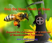 Sign Petition to the EPA to Ban Systemic Pesticides (Neonicotinoids) that Kill Bees