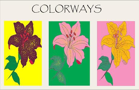 Motif color ways