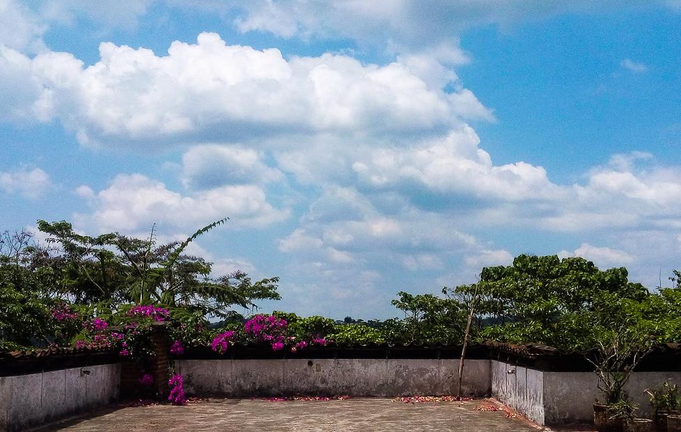 terraza comun