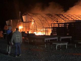 Greenhouse burning Nov 5