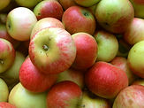 Autumn crisp apple.jpg