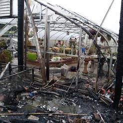 Greenhouse Nov 6