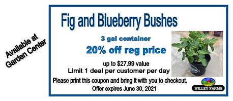 June coupon 3.jpg