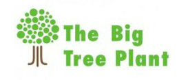 big_tree_plant.png