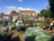 community allotment open day