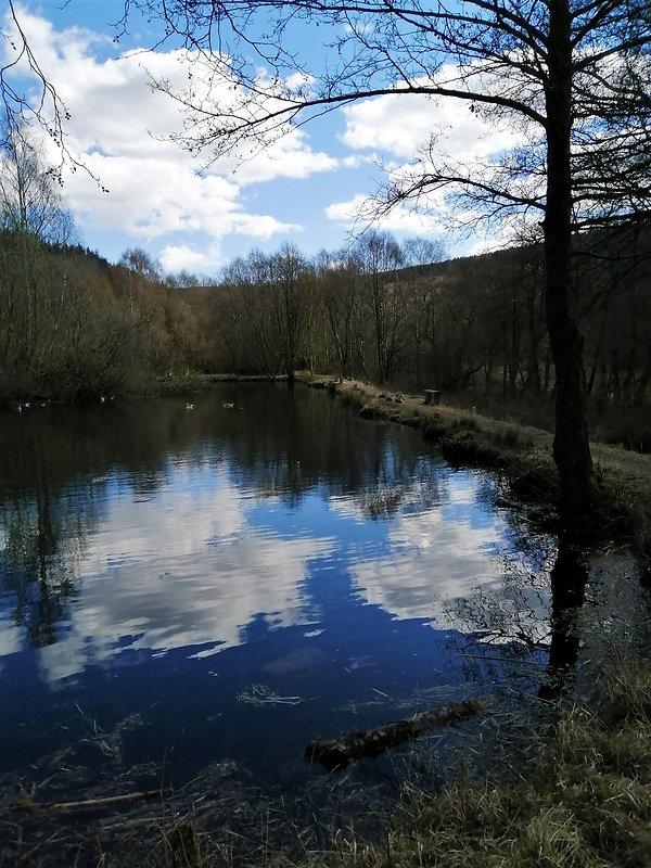 03 Ellers pond, Ellerburn.jpg