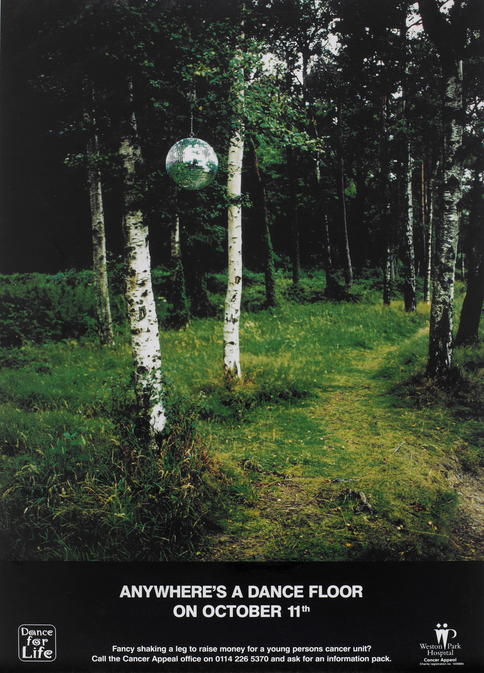GLITTERBALL FOREST AD