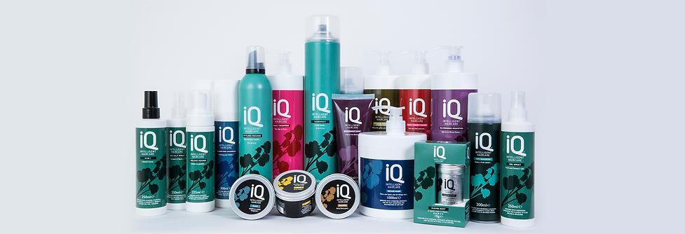 IQ banner.png