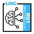 Longitudinal Mapping of Network Development Underlying Executive Dysfunction in Adolescencee