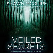 Cover_2019_Veiled Secrets.jpg