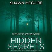 Hidden Secrets.jpg