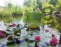 Jardin des Paradis, Cordes sur Ciel