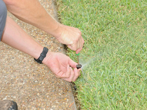 Tips for Maintaining Your Sprinkler System