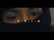 F.E.I.N.