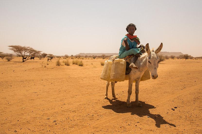 HL_LPERPIGNAIBAN_SUDAN_18.jpg
