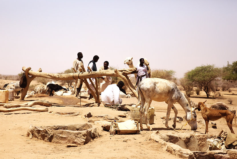 HL_LPERPIGNAIBAN_SUDAN_25.jpg