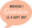 Ouverture micro creche Lyon le 4 septembre 2017